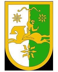 флаг абхазии фото